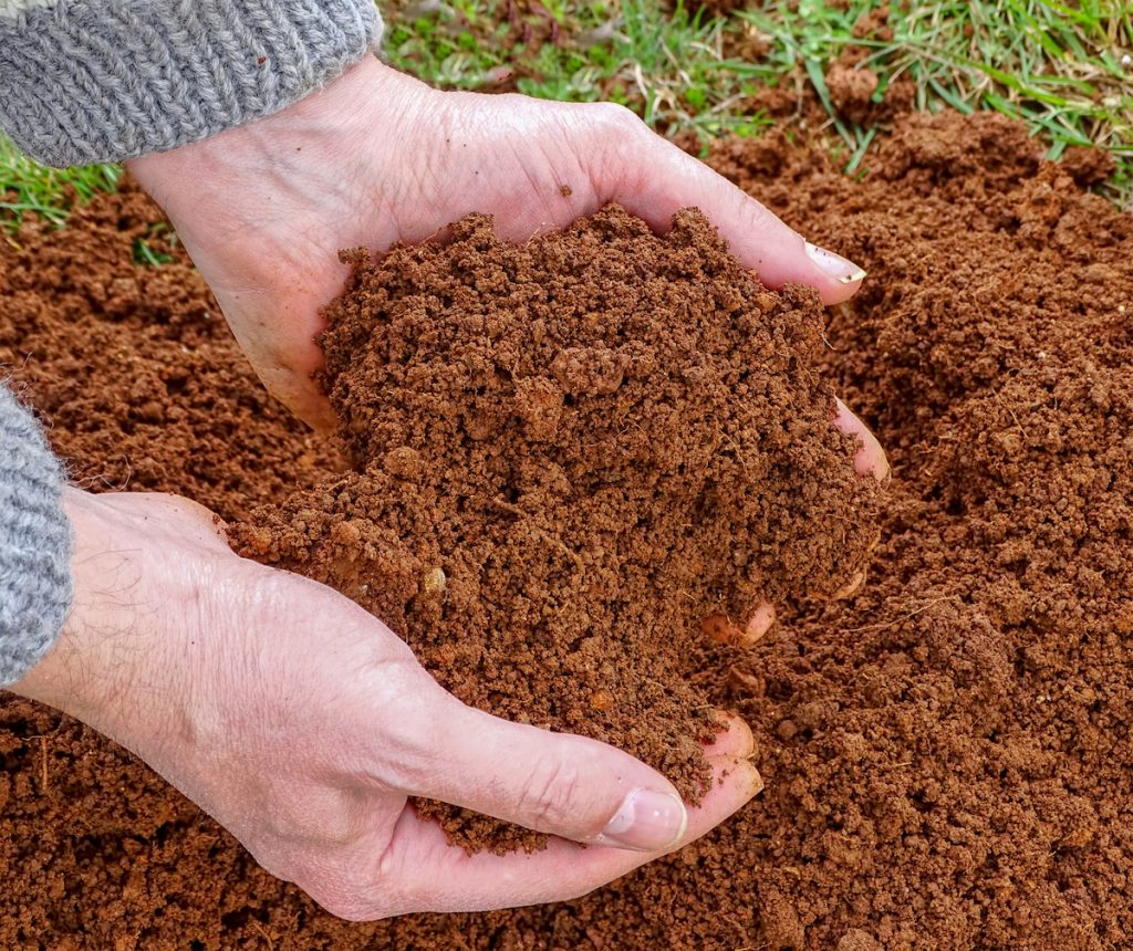 soil tips for winter